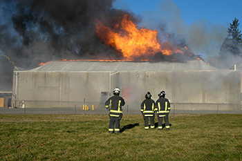 is 182148811 fire large