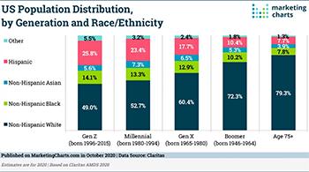 US Population Makeup Lg