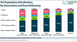 US Population Makeup sm